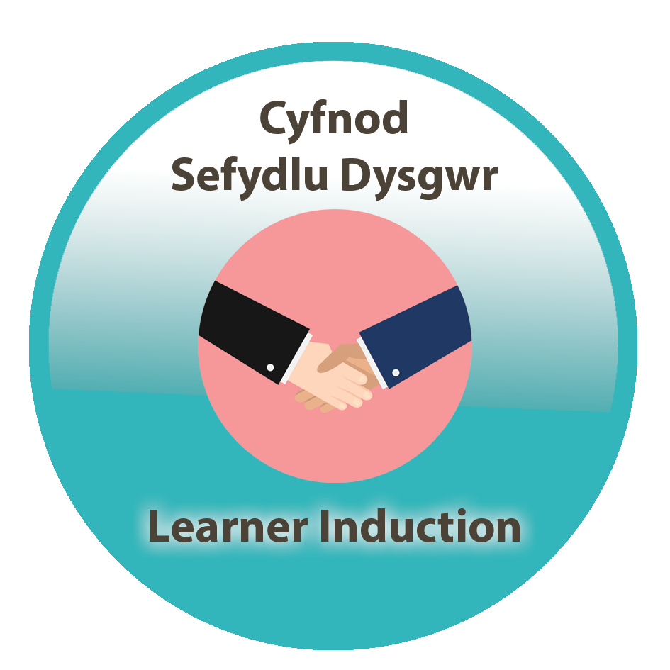 learner induction